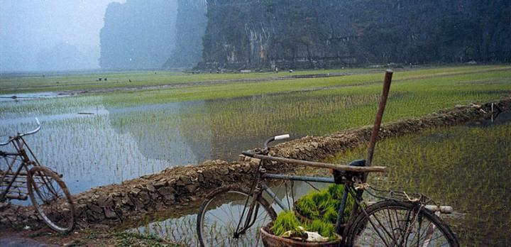 Voyage sur-mesure, Trekking dans la région de Sapa