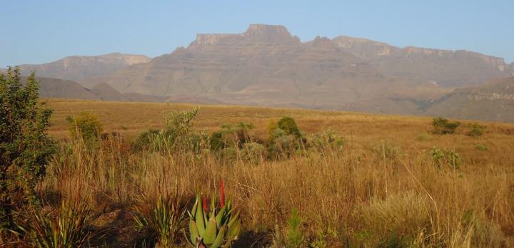Voyage sur-mesure, Randonnée liberté dans les montagnes du Drakensberg, et safari dans le bush