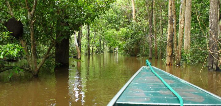 Voyage sur-mesure, Les incontournables: Rio, Iguaçu et Amazonie