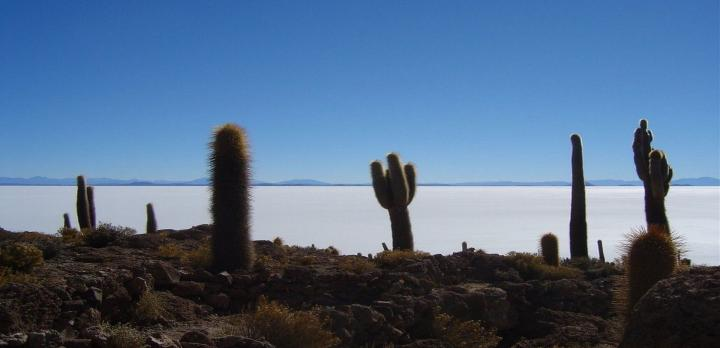 Voyage sur-mesure, Circuit Nord Argentine – Bolivie - Chili