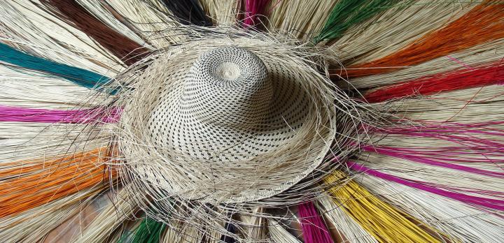 Voyage sur-mesure, Voyage en Equateur et aux Galapagos