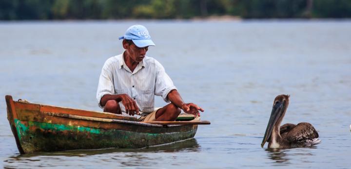 Voyage sur-mesure, Découverte complète du Guatemala avec Copan