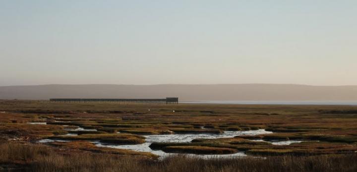 Voyage sur-mesure, Voyage au Namaqualand et au Kgalagadi