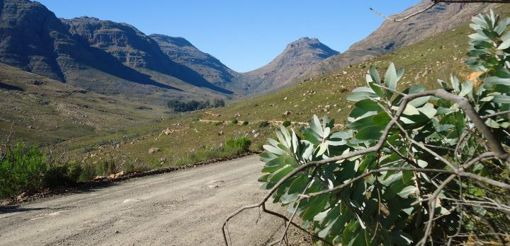 Voyage sur-mesure, Petit coin de paradis sauvage dans les montagnes du Cederberg