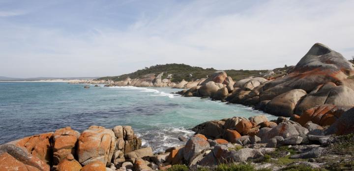 Voyage sur-mesure, Autotour 3 semaines en Tasmanie