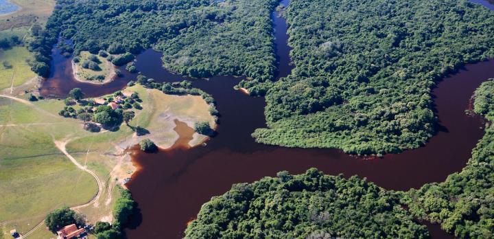 Voyage sur-mesure, Immersion au coeur du Pantanal