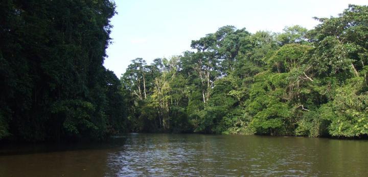 Voyage sur-mesure, Volcans, réserves et plages : le grand tour du Costa Rica