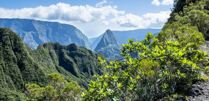 Voyage sur-mesure, Cocktail de saveurs Réunion / Maurice