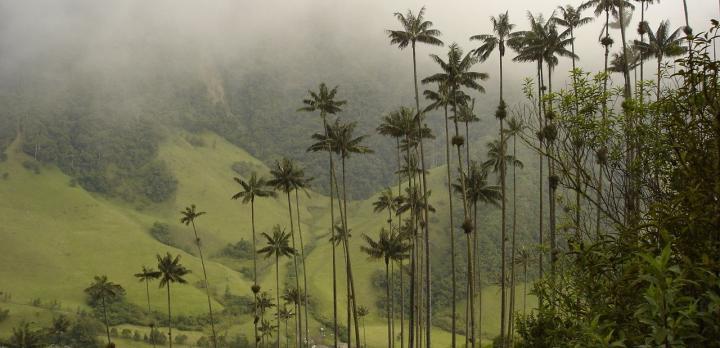 Voyage sur-mesure, L'essentiel de la Colombie