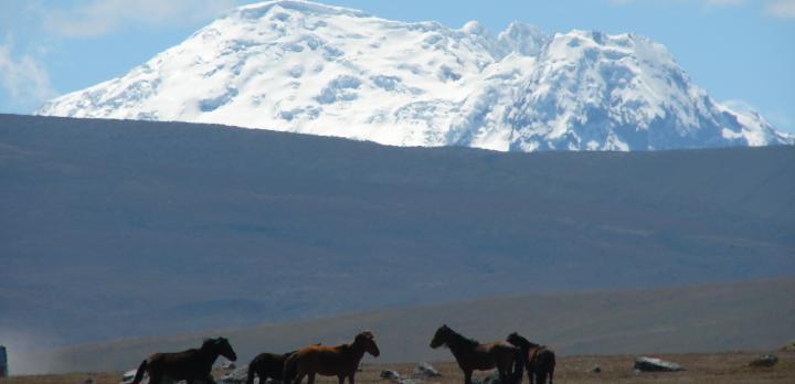 Voyage sur-mesure, Trek en Equateur