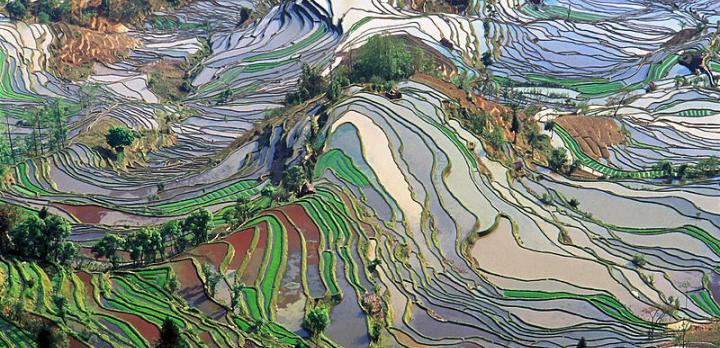 Voyage sur-mesure, rizières et minorités du sud Yunnan
