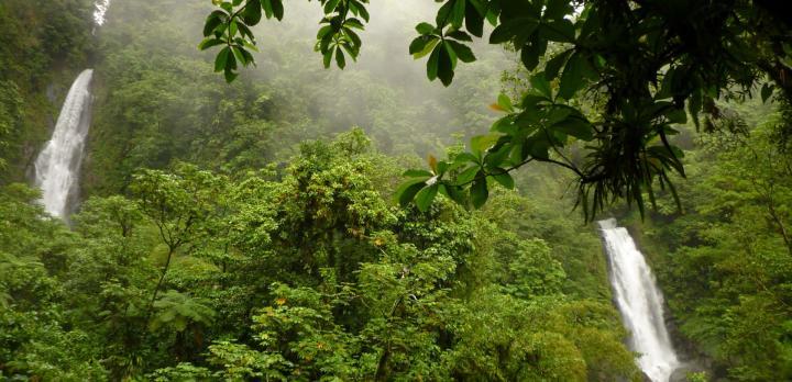 Voyage sur-mesure, Partez à la découverte de l'Ile aux Pirates, le paradis des amoureux de la nature!