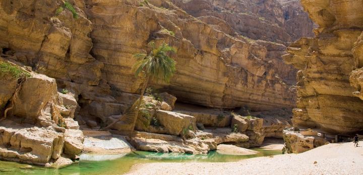 Voyage sur-mesure, Randonnée et baignade au Wadi Bani Khalid à Oman