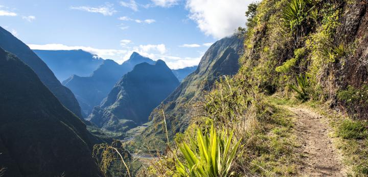 Voyage sur-mesure, Des nouvelles de notre correspondant à La Réunion