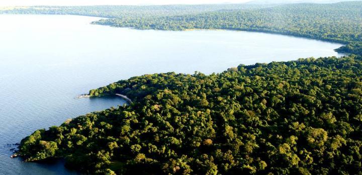 Voyage sur-mesure, Rubondo Island : la Tanzanie hors des sentiers battus