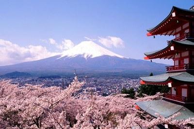 Voyage sur-mesure, Jennifer chez les Japonais