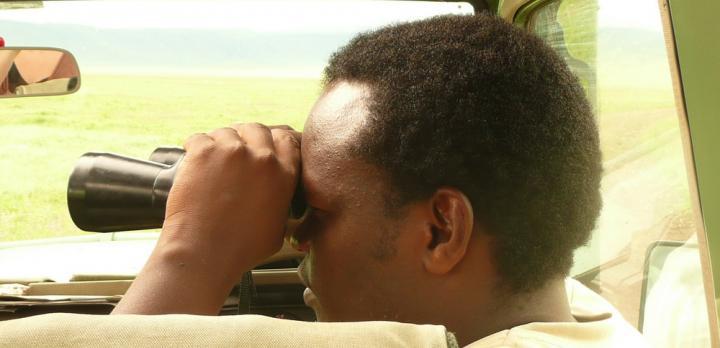 Voyage sur-mesure, Quels parcs choisir en Tanzanie ?