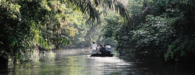 Voyage sur-mesure, Tortuguero, à la découverte du Parc National !
