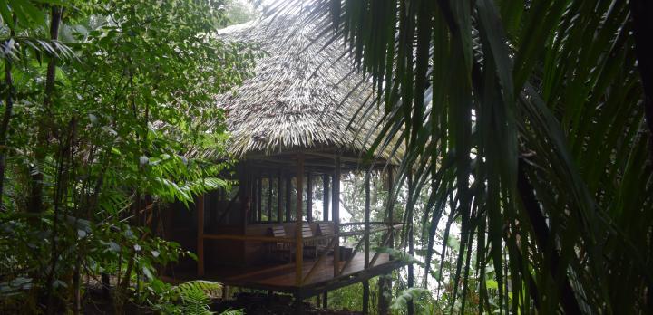 Voyage sur-mesure, Séjour au Chiminos Lodge dans la Lagune de Petexbatun