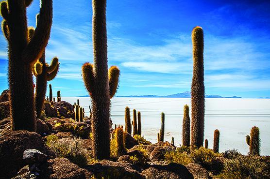 Voyage sur-mesure, Bolivie : nos sites insolites favoris !