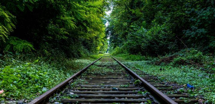 Voyage sur-mesure, Et si on prenait le train ?