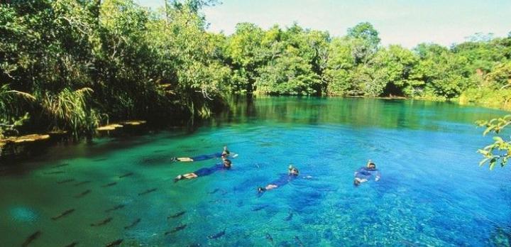 Voyage sur-mesure, Vivre une experience nature exceptionnelle dans le Pantanal