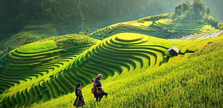 Voyage sur-mesure, Que faire à Sapa, au Vietnam ?