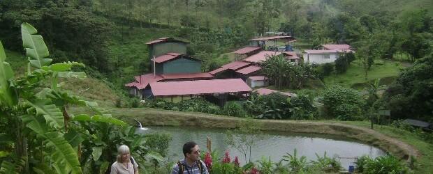 Voyage sur-mesure, À la découverte du Café au Costa Rica !