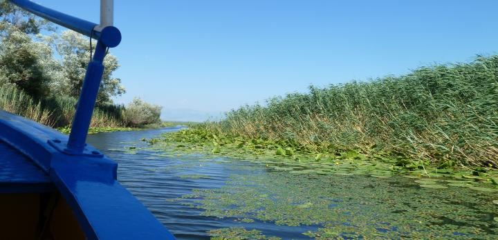 Voyage sur-mesure, Croisière en barque Lac de Skadar