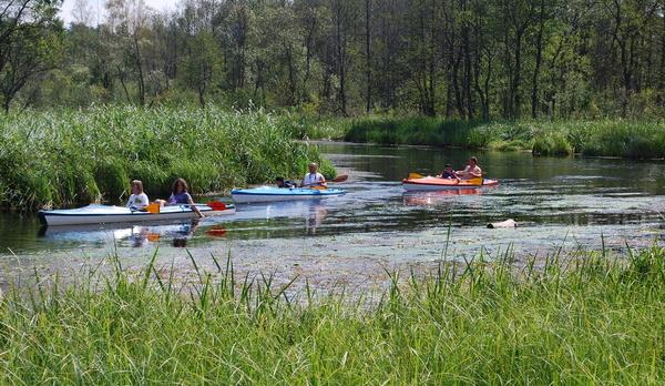 Voyage sur-mesure, Kayak en Mazurie