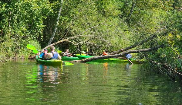 Voyage sur-mesure, Journée de Kayak sur la Radunia