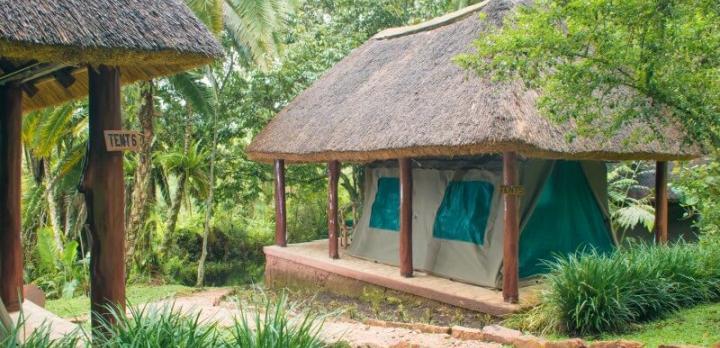 Voyage sur-mesure, Lodge de tentes à Kibale