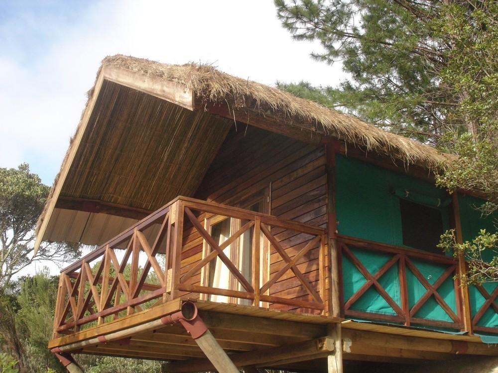 Voyage sur-mesure, Saha Forest Camp