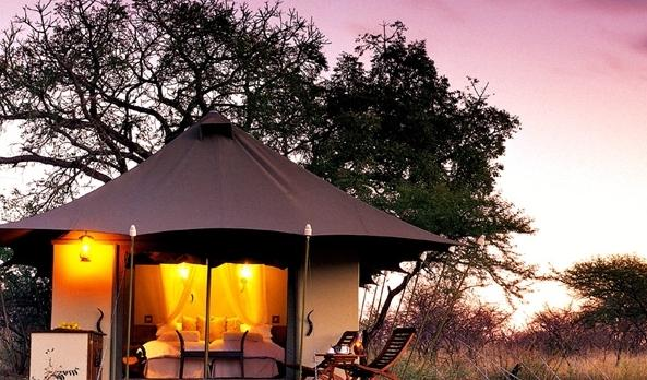 Voyage sur-mesure, White Elephant Safari - safari lodge
