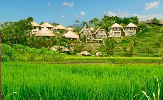 Voyage sur-mesure, Surya Shanti Villas