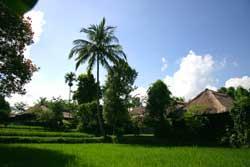 Voyage sur-mesure, Ananda Cottages