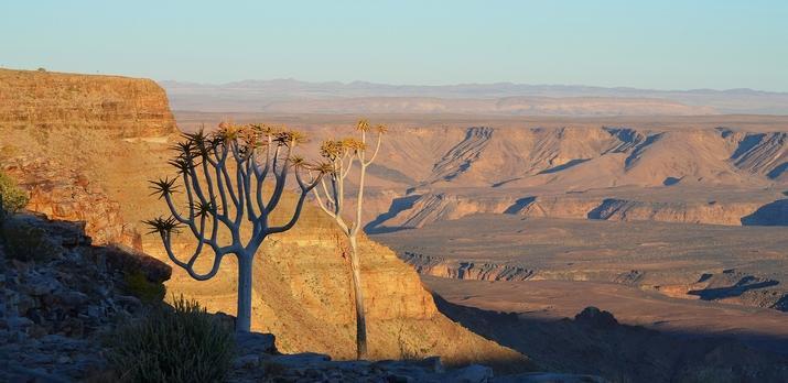 Voyage sur-mesure, Un voyage complet en Namibie