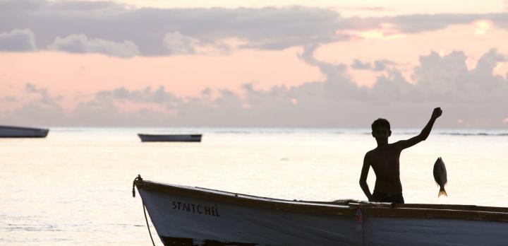 Voyage sur-mesure, L'Ile Maurice en liberté