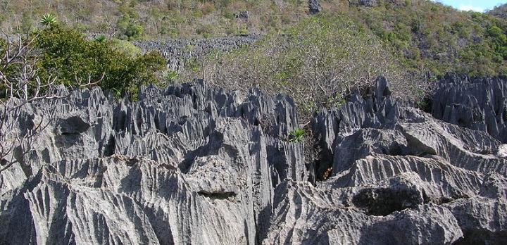 Voyage sur-mesure, Le nord de Madagascar : La baie de Diego Suarez, Les Tsingy et Nosy Be