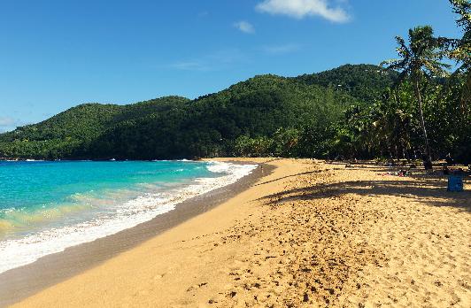 Voyage sur-mesure, Plage, forêt, mer à la découverte de la Guadeloupe en location de voiture!