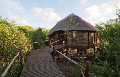 Voyage sur-mesure, Séjour à Saadani entre safari et plage