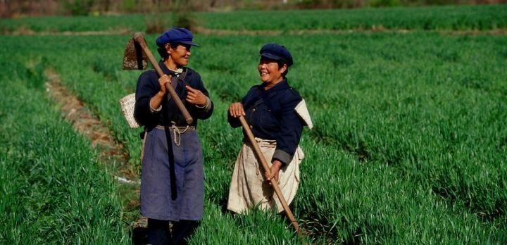 Voyage sur-mesure, Printemps éternel au Yunnan