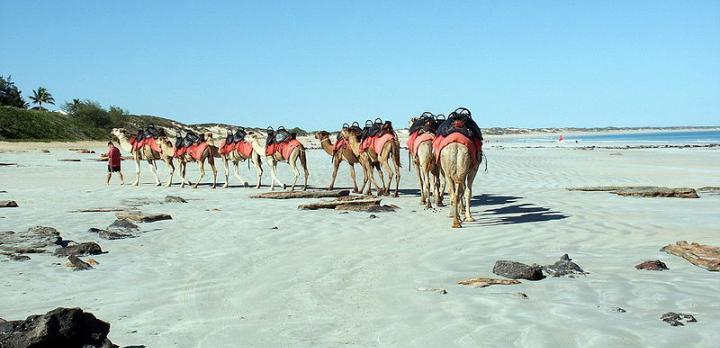Voyage sur-mesure, La traversée de L'Australie sauvage: les Kimberleys de Broome à Darwin