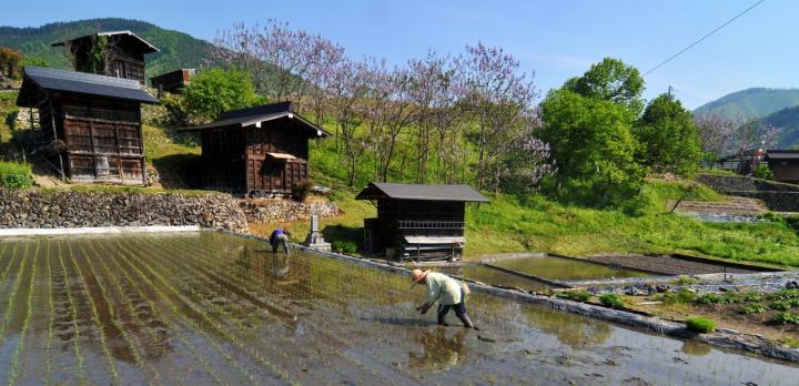 Voyage sur-mesure, Visite en vélo du village d'Hida Furukawa