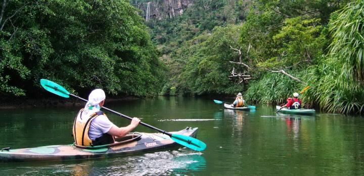 Voyage sur-mesure, Découverte d'Iriomote: kayak, mangrove & snorkelling