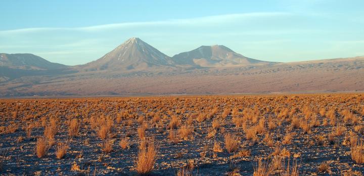 Voyage sur-mesure, Salar de Surire, Humberstone (village fantôme), Désert d'Atacama