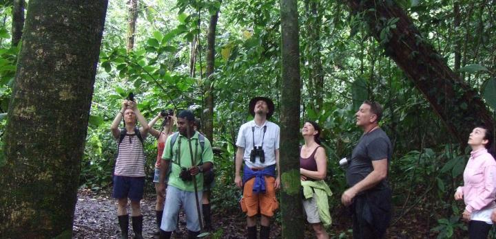 Voyage sur-mesure, Découverte de Tortuguero, petite amazonie costaricienne