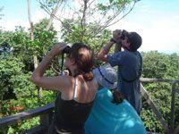 Voyage sur-mesure, Séjour solidaire en milieu rural, en pleine forêt