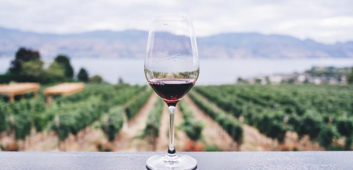 Voyage sur-mesure, Du Beaujolais au Mâconnais, menez la vie de chateau sur la route des vins !