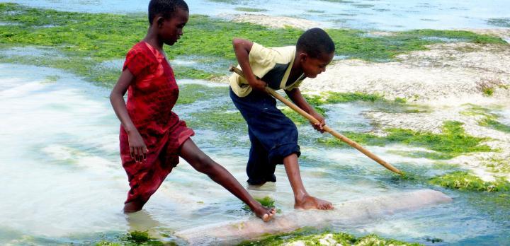 Voyage sur-mesure, Zanzibar en famille